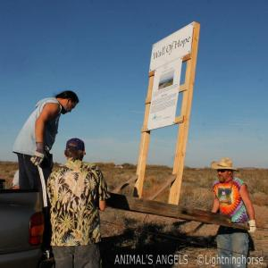 """People learned about how our horses, mules and burros are transported across our borders"""